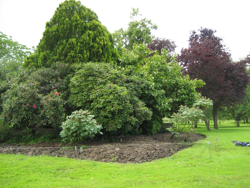 Jardinier montfort l amaury for Entretien jardin 49