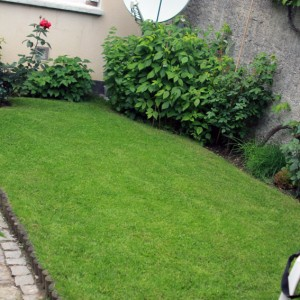 jardin-Maurepas