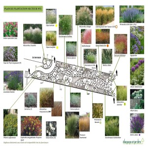 plan de plantation secteur N°2 LONGPONT sur ORGE-page-001
