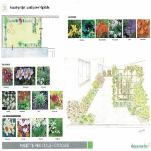SAINT CLOUD - ambiance végétale jardinet + croquis